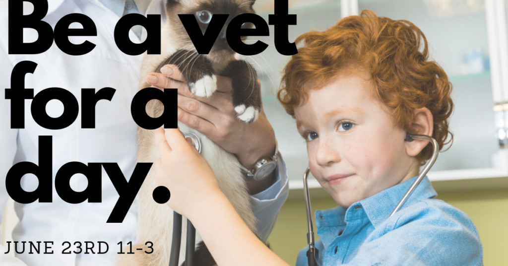 Be A Vet For The Day June 23 2019 At Animal Hospital